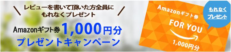Amazonポイント1,000円分プレゼントキャンペーン