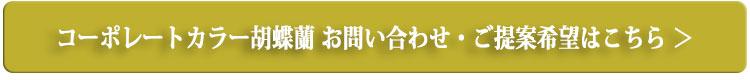 コーポレートカラーの胡蝶蘭 お問い合わせ・ご提案はこちらから