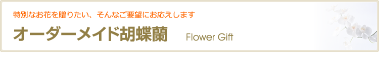 オーダーメイド胡蝶蘭